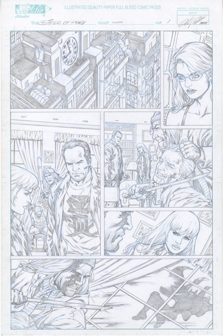 Birds Of Prey - Punisher Original Comic Art
