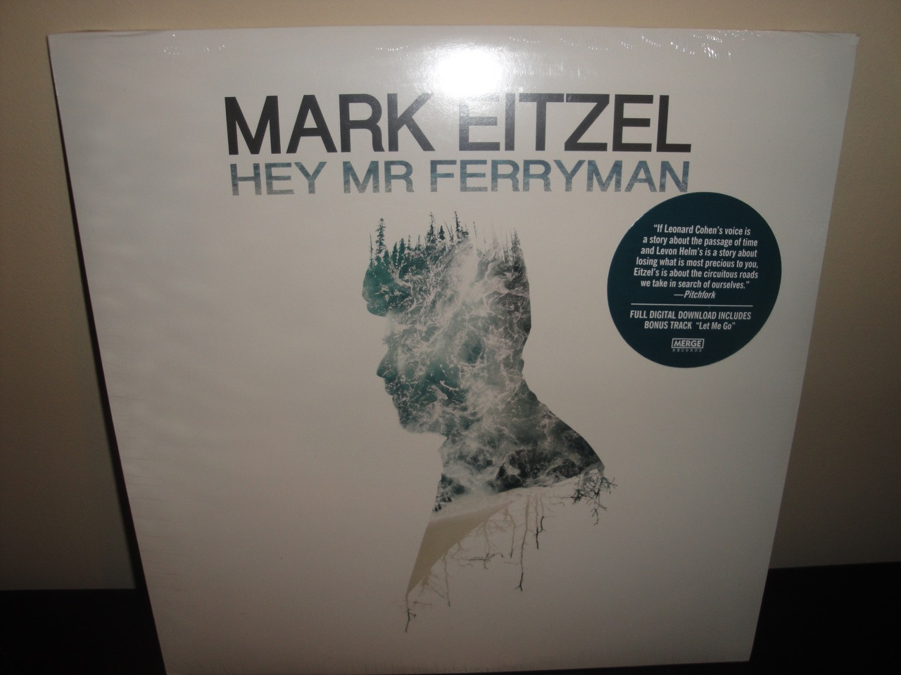 "Mark Eitzel ""Hey Mr Ferryman"" 2017 Vinyl LP with Digital Download"