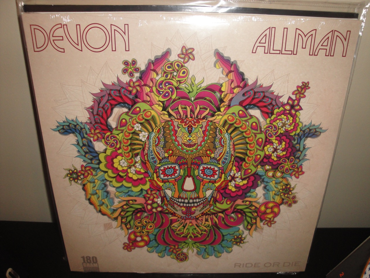 Devon Allman Vinyl