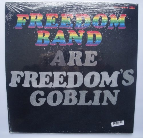 Ty Segall - Freedom's Goblin - 2XLP Double Vinyl, Drag City, 2018