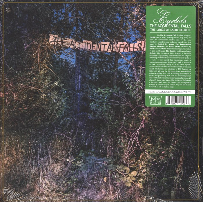 Eyelids - The Accidental Falls - Limited Edition, Colored Vinyl, Jealous Butcher Records, 2020