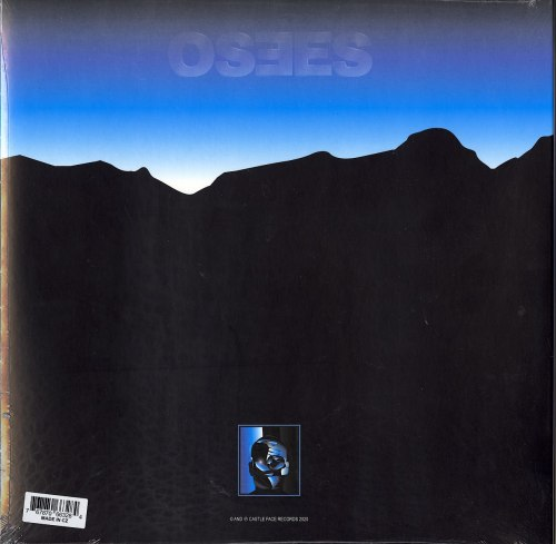 Limited Edition, Neon Orange, Vinyl, LP, Castleface, 2020