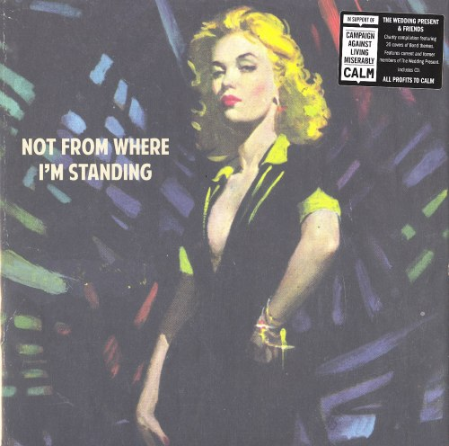 Wedding Present and Friends - Not From Where I'm Standing - Double Vinyl, LP, Come Play with Me, 2020