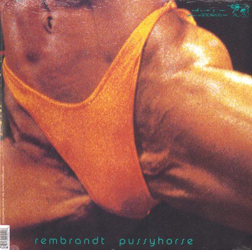 Butthole Surfers - Rembrandt Pussyhorse - Vinyl, LP, Reissue, Latino Bugger Veil, 2013