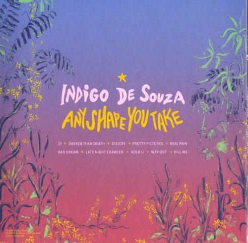 Indigo De Souza - Any Shape Of You - Limited Edition, Tangerine Vinyl, LP, Saddle Creek, 2021