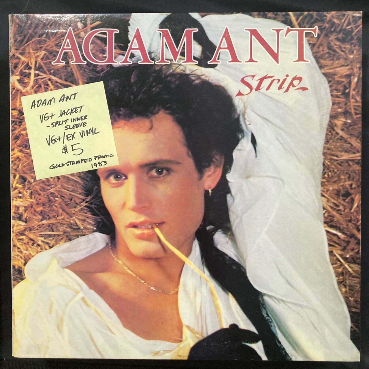 Adam Ant Vinyl Record